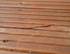 Popraskaná dřevěná terasa ze sukaté dřeviny