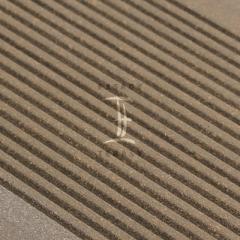 WPC terasy - terasová prkna wpc Silvadec - plný profil - WPC prkna Silvadec Classic - odstín šedá